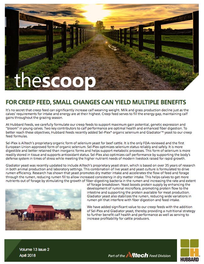 The Scoop - April 2018