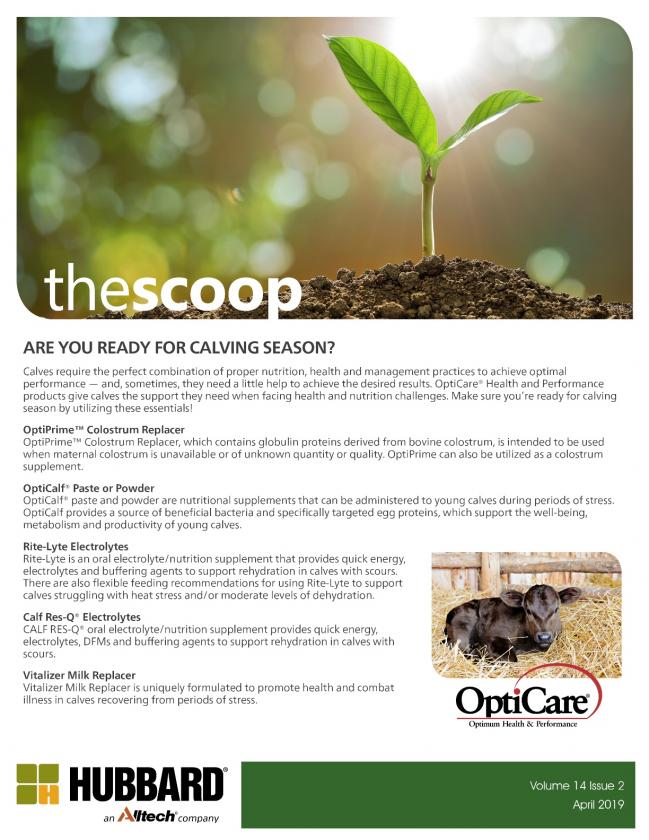 The Scoop - April 2019