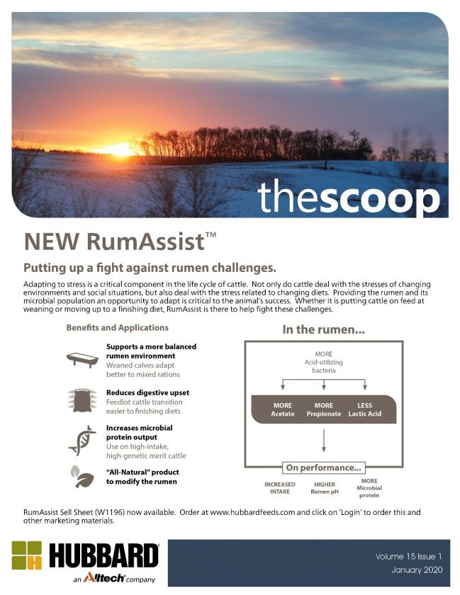 The Scoop - January 2020
