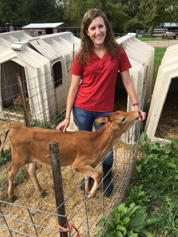 Angie with a calf,